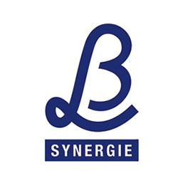 Logo L&B Synergie